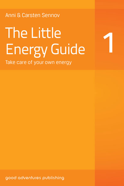 The Little Energy Guide 1